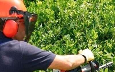 La maquinaria que te hará falta este verano para el mantenimiento de tu jardín